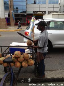 coconut seller dominicana