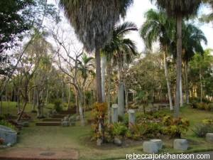 botanical garden santo domingo