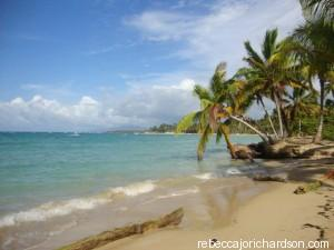 beach las terrenas paradise