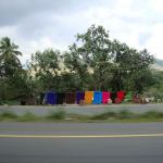 rugs for sale dominican republic